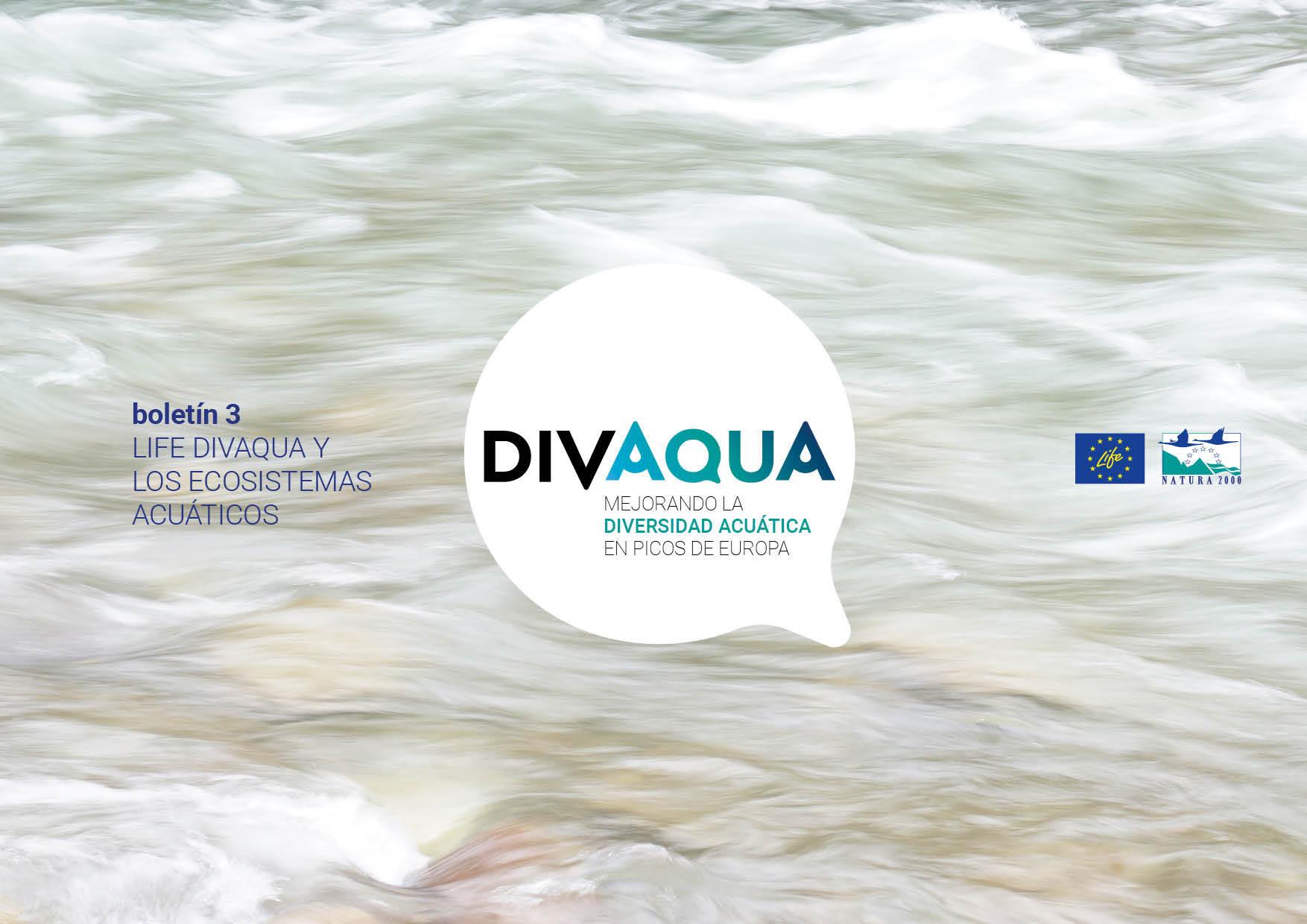 Portada boletín 3_LIFE DIVAQUA y los ecosistemas acuáticos