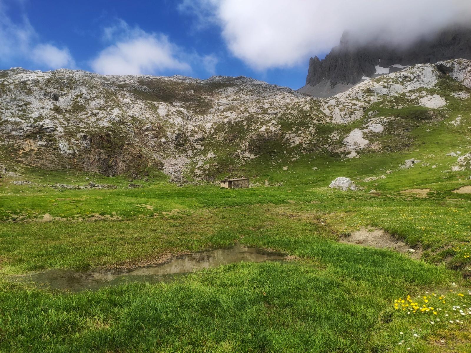Muestreo de humedales en Picos de Europa